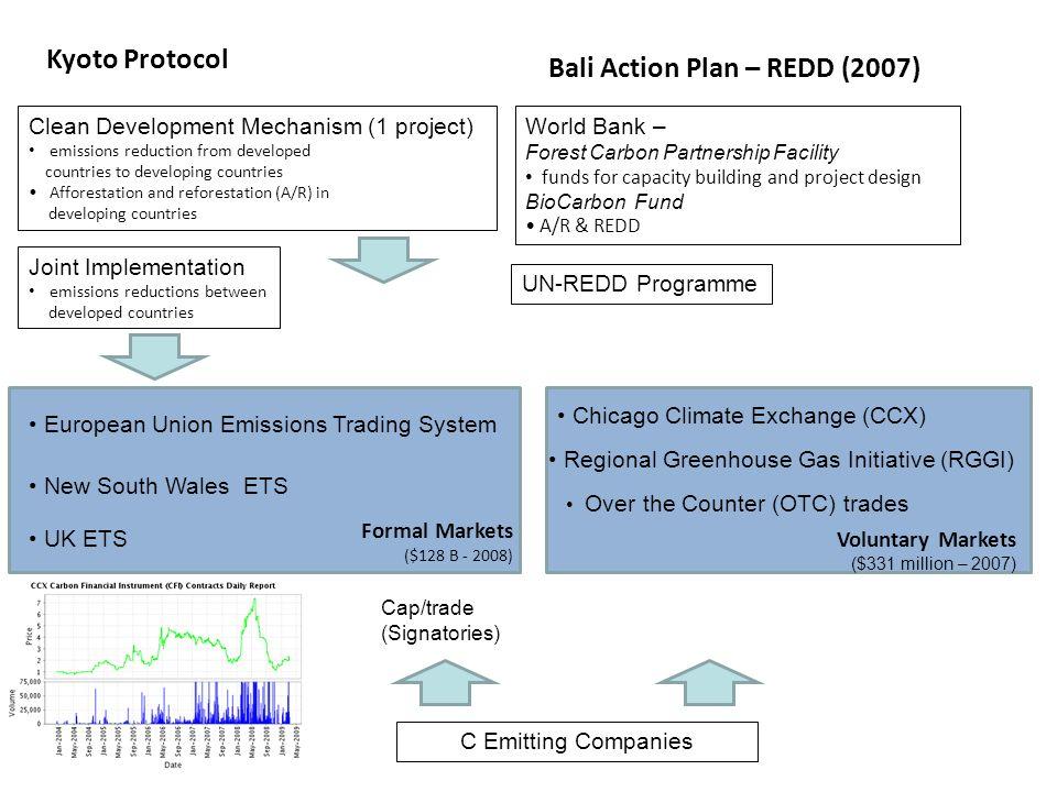 Bali Action Plan – REDD (2007)