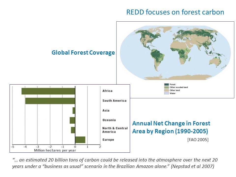 REDD focuses on forest carbon