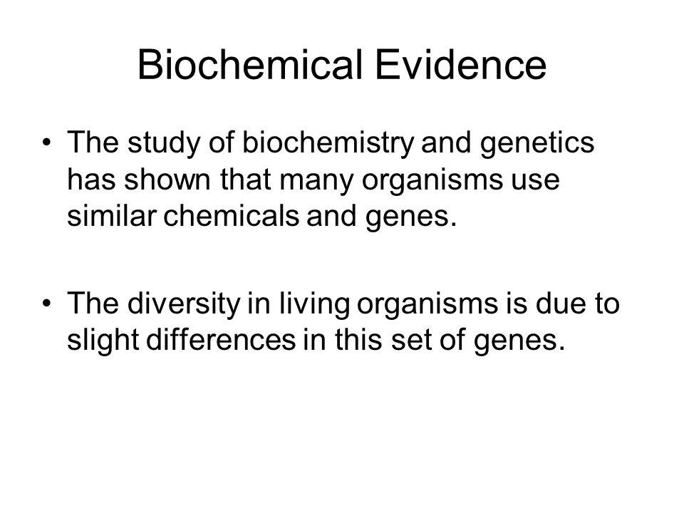 Essentials of Biology Sylvia S Mader ppt video online download – Biochemical Evidence for Evolution Worksheet