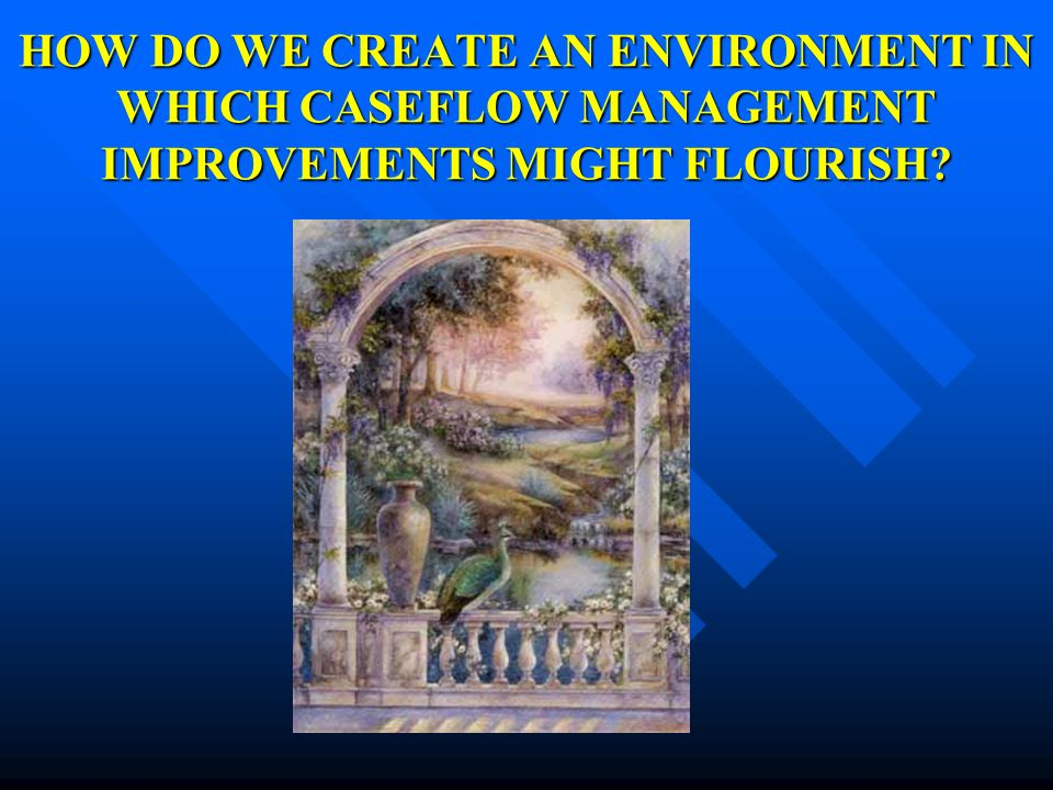 HOW DO WE CREATE AN ENVIRONMENT IN WHICH CASEFLOW MANAGEMENT IMPROVEMENTS MIGHT FLOURISH