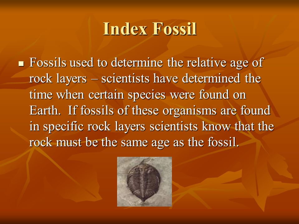 What Type Of Dating Are Index Fossils Used