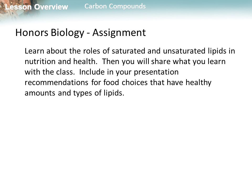 Honors Biology - Assignment