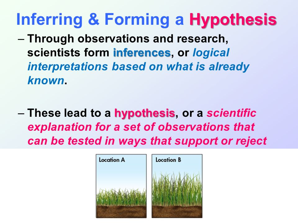 hypothesis based science