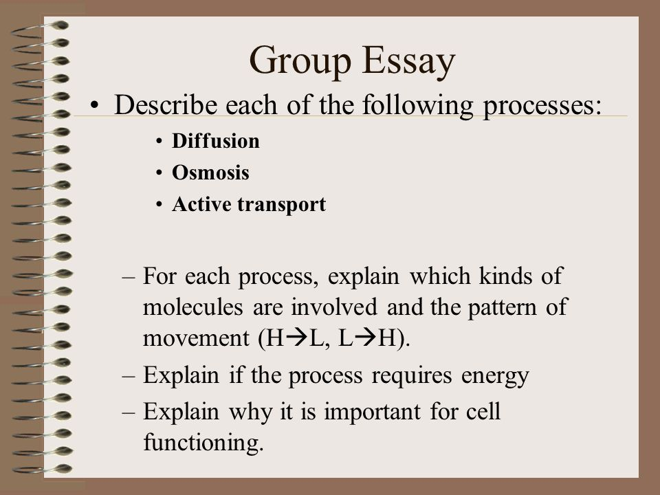 diffusion and osmosis essay question Osmosis and diffusion involve the movement of water toggle navigation quizovercom create quiz multiple choices questions (mcq) essay questions flash cards.