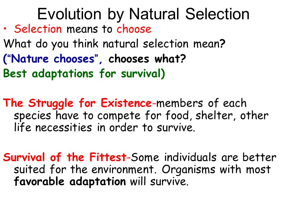 the evolution of adaptations and traits in nature Dramatic changes in traits can occur through mutations in a small number of  genes,  similar evolutionary adaptations can occur independently in different.