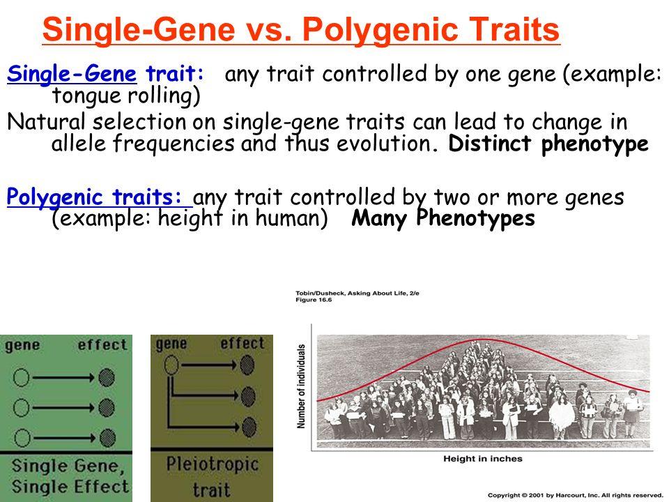 Venn Diagram Of Single Gene Traits And Polygenic Traits Roho