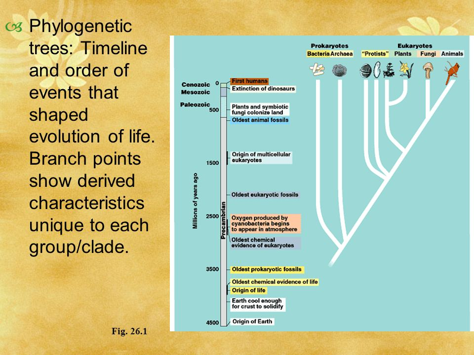 CHAPTER 26 Early Earth and the Origin of Life - ppt download