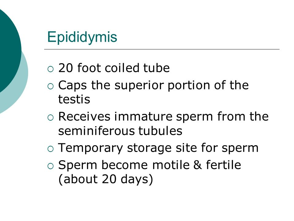 Sex Tube Type Of Site