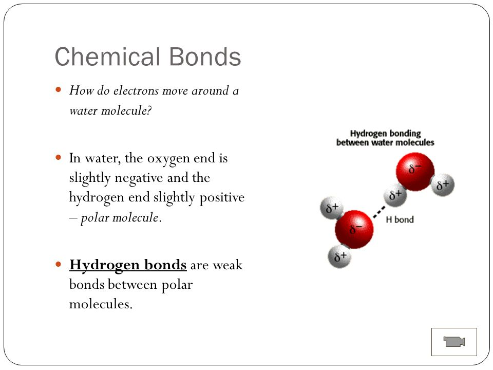 Ch. 1 The Chemistry of Life - ppt download