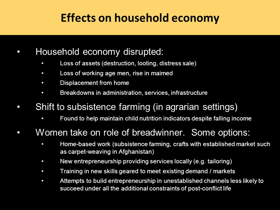Effects on household economy