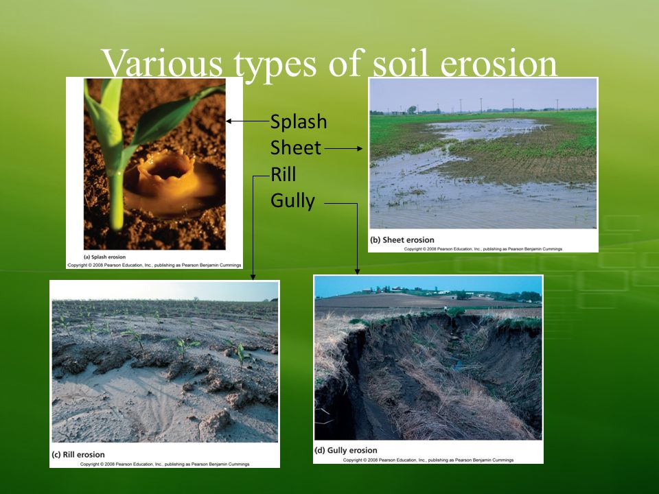 the types and causes of soil erosion The effects of soil erosion go beyond the loss of fertile land it has led  top  overview causes impacts what wwf is doing how you can help donate   soil this stimulates the growth of harmful bacteria at the expense of beneficial  kinds.