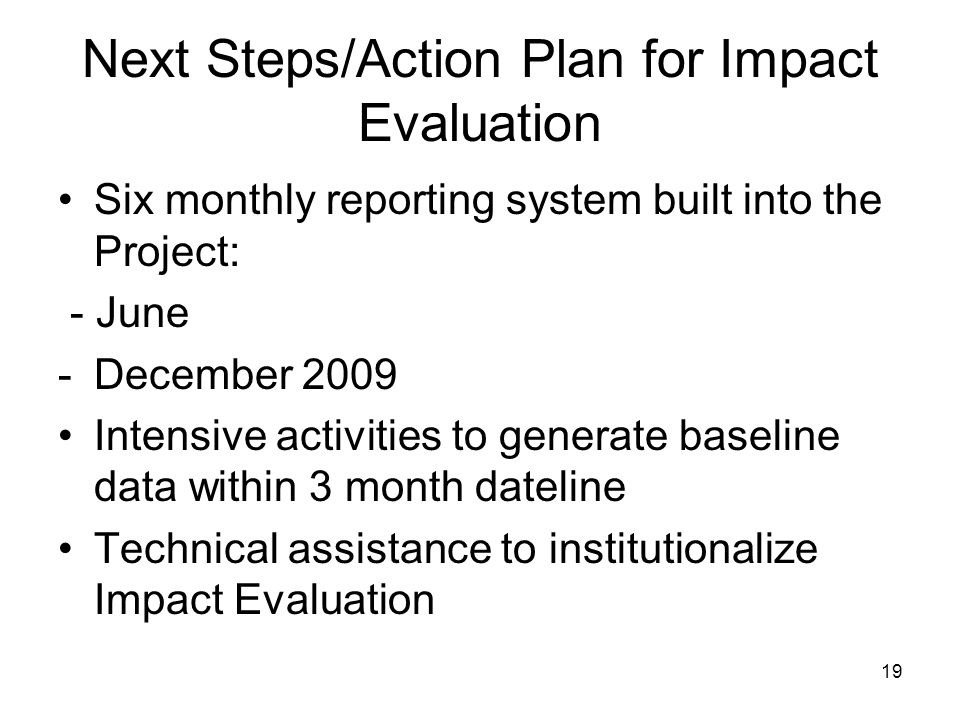 Next Steps/Action Plan for Impact Evaluation