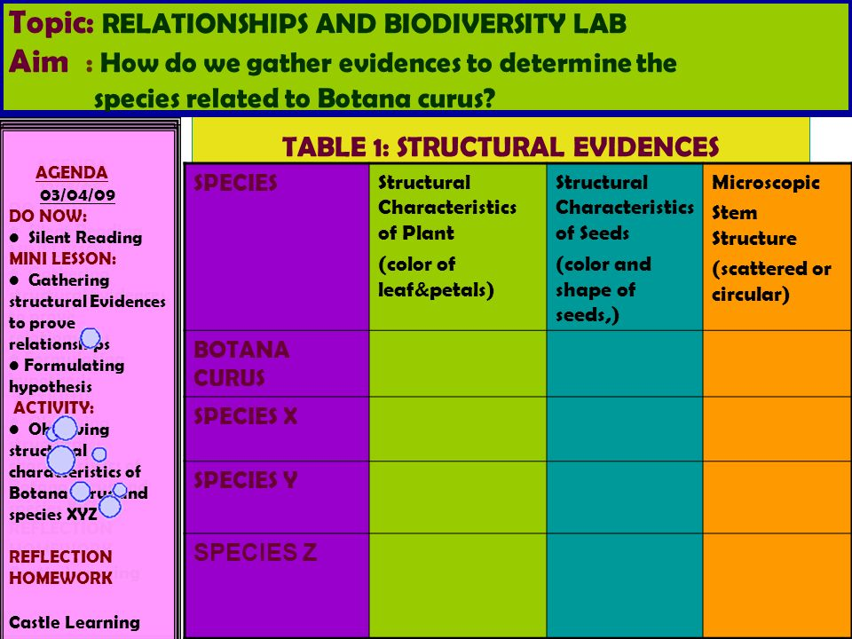 relationship and biodiversity lab answers