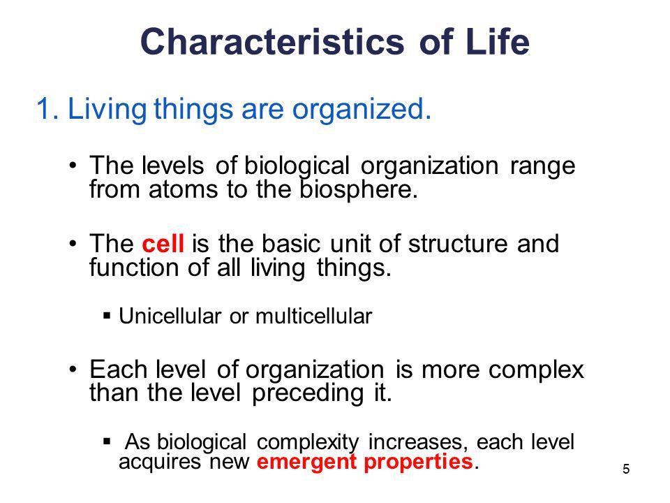 New Life Properties Inc