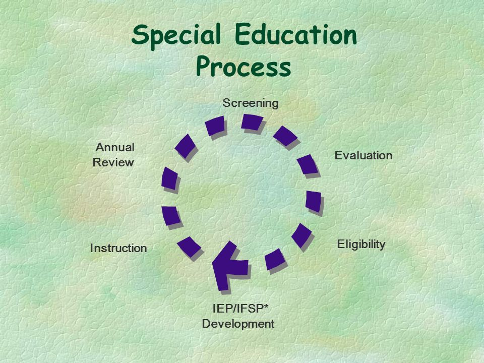 Special Education Process