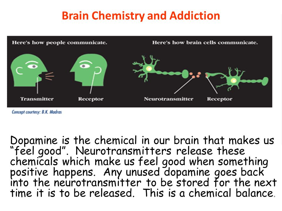 Brain Chemistry and Addiction
