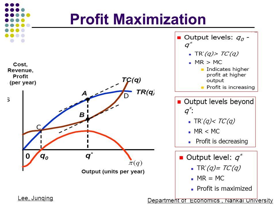 profit maximaization