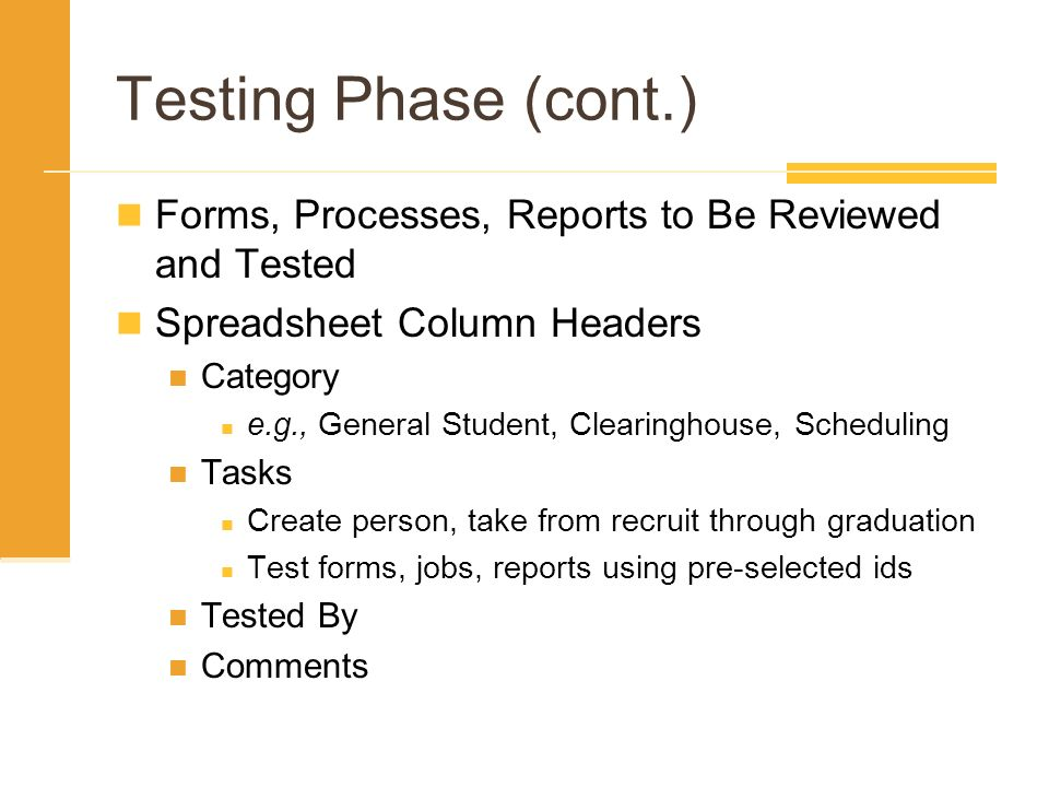 Testing Phase (cont.) Forms, Processes, Reports to Be Reviewed and Tested. Spreadsheet Column Headers.
