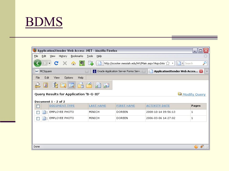 BDMS Here is a example of what the user would see if they access BDMS.