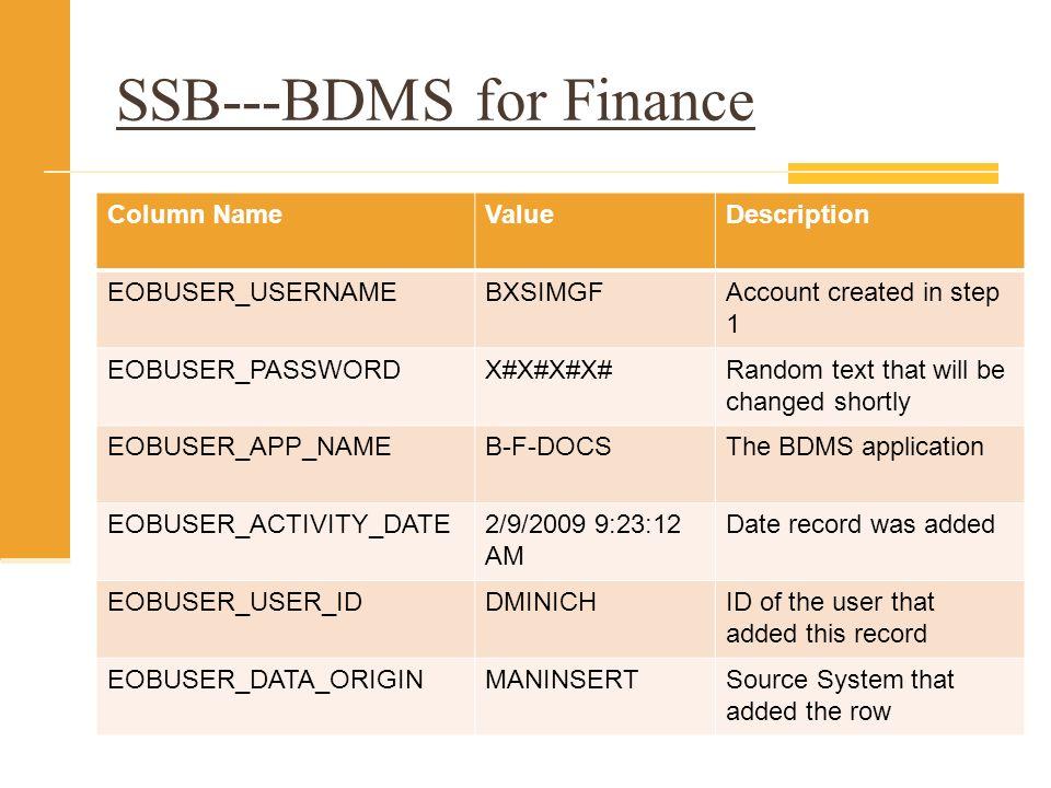 SSB---BDMS for Finance