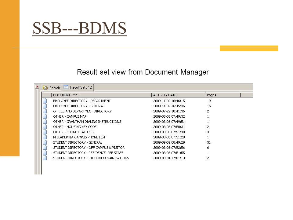 Result set view from Document Manager