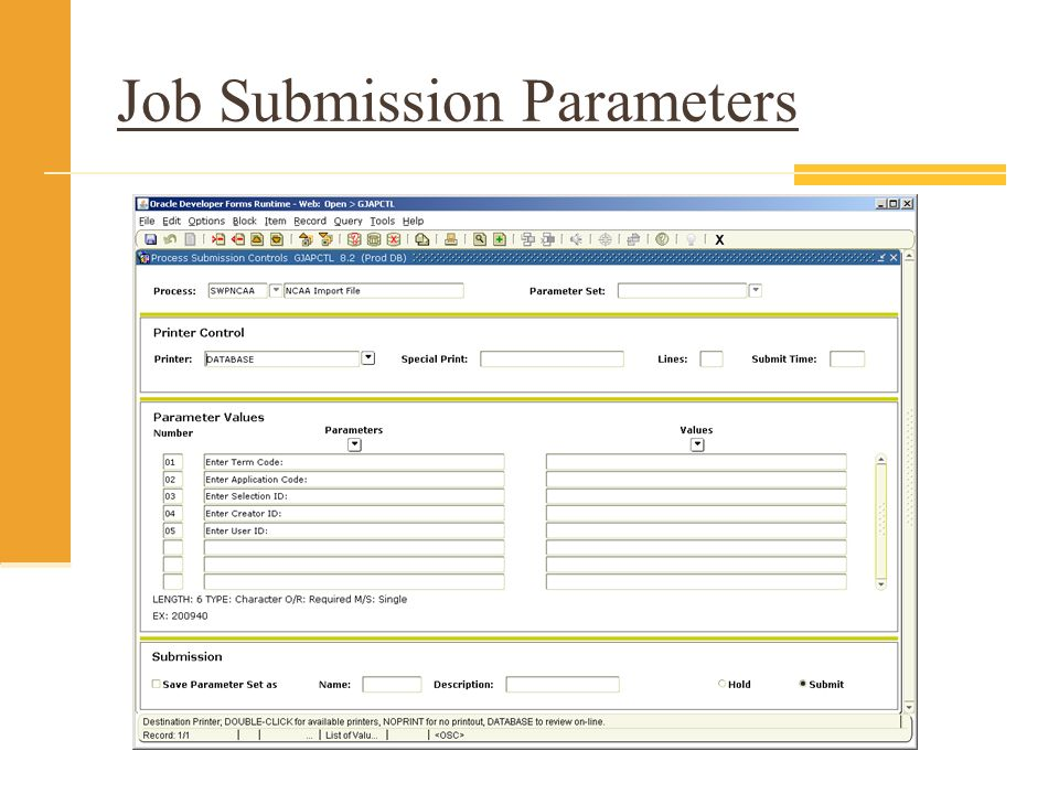 Job Submission Parameters