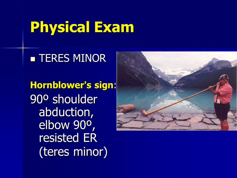 Physical Exam TERES MINOR.
