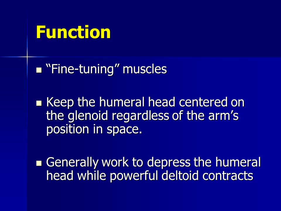Function Fine-tuning muscles