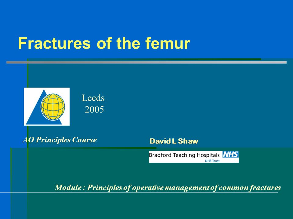 Fractures of the femur Leeds 2005 AO Principles Course