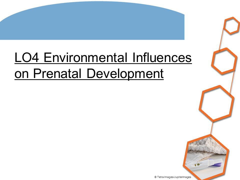 environmental problems in prenatal development A fetus or foetus is the prenatal stage between the embryonic stage  further  information: environmental toxicants and fetal development  a developing fetus  is highly susceptible to anomalies in its.
