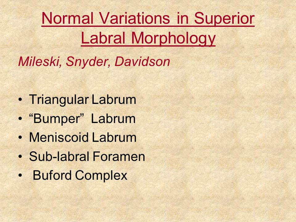Normal Variations in Superior Labral Morphology