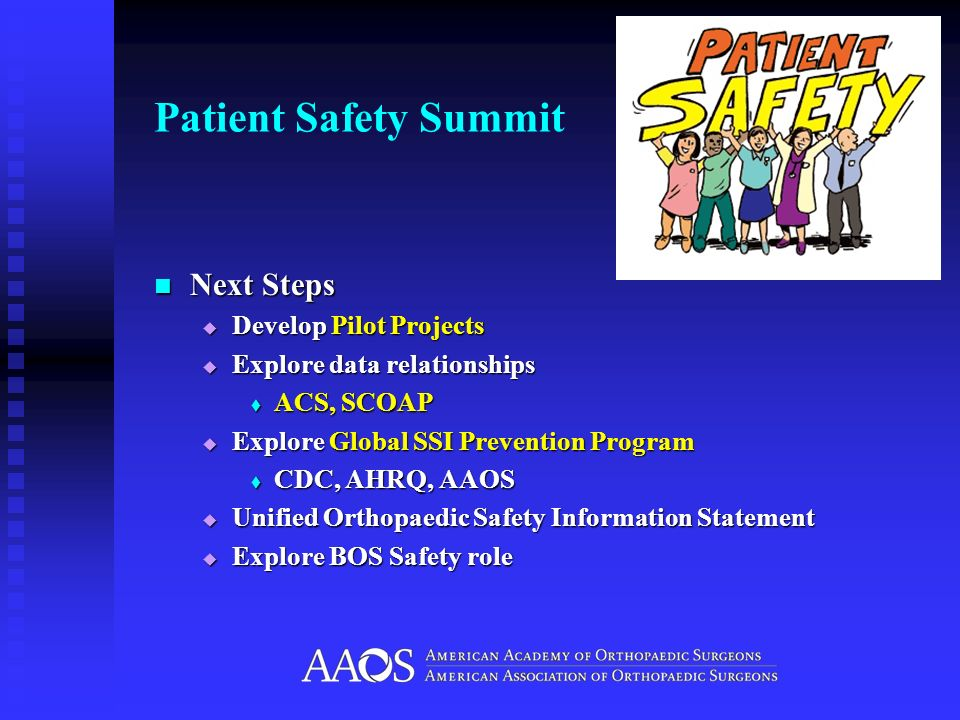 Patient Safety Summit Next Steps Develop Pilot Projects
