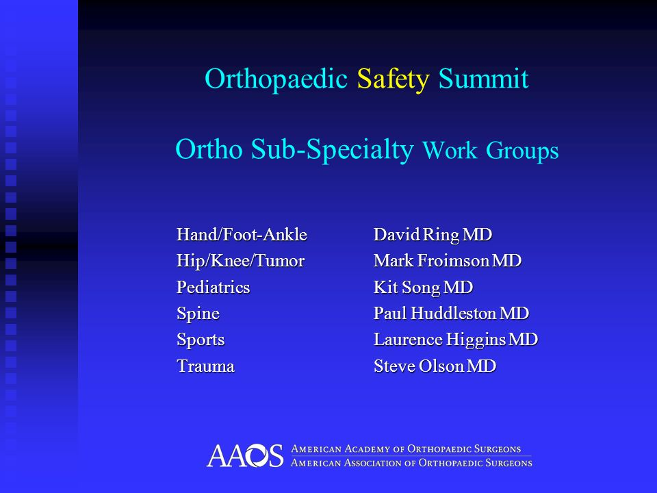 Orthopaedic Safety Summit Ortho Sub-Specialty Work Groups