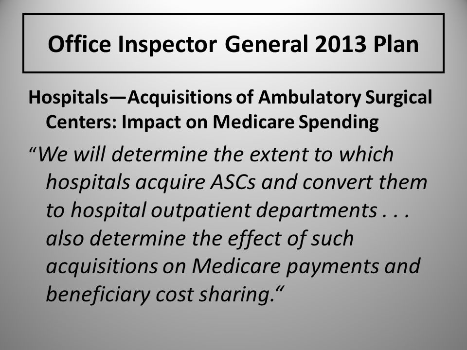 Office Inspector General 2013 Plan