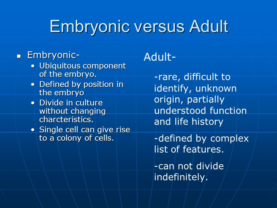 Embryonic versus Adult