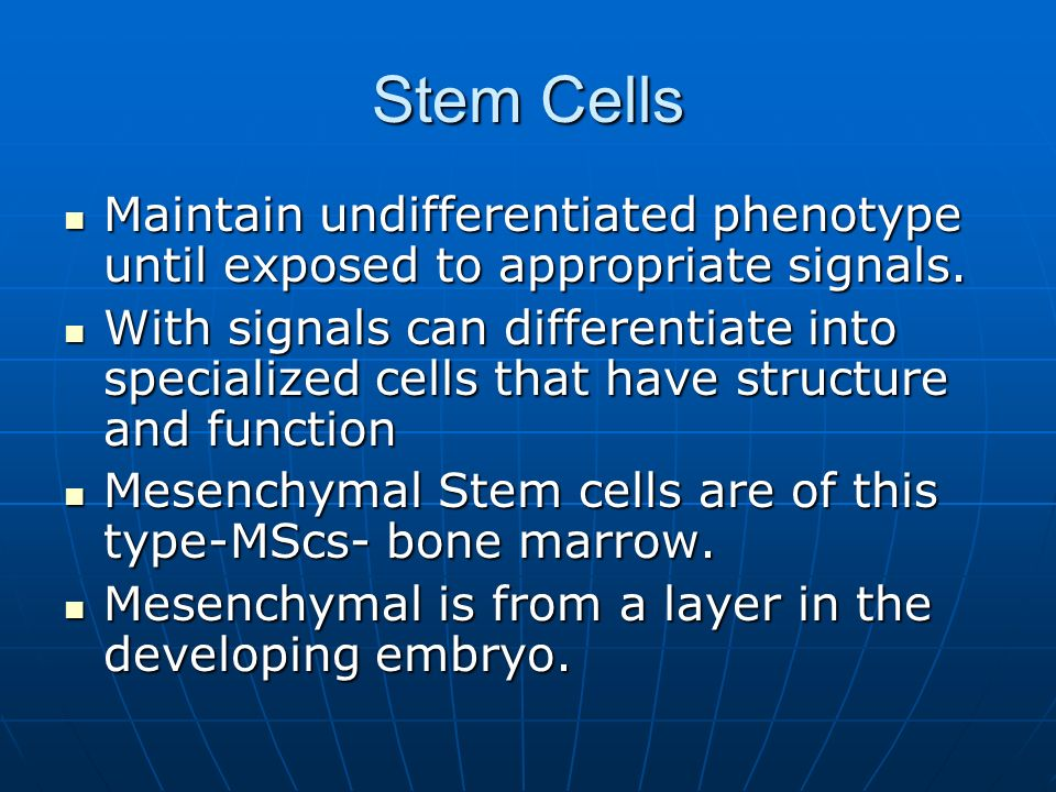 Stem CellsMaintain undifferentiated phenotype until exposed to appropriate signals.