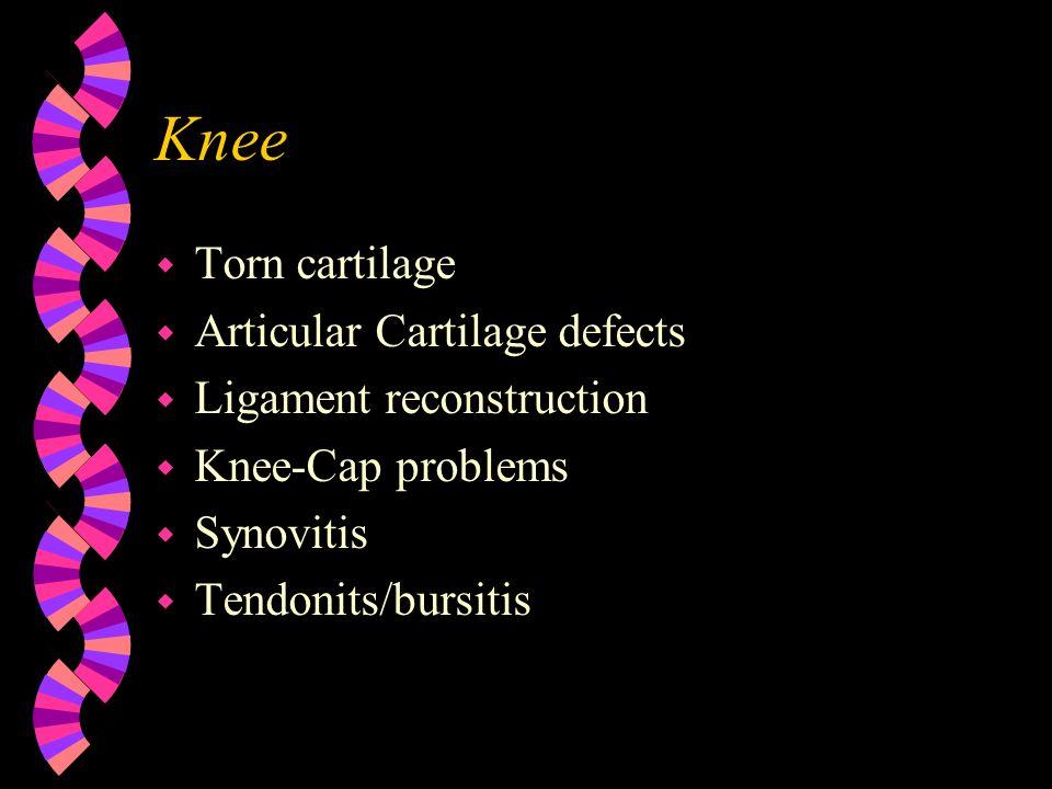 Knee Torn cartilage Articular Cartilage defects