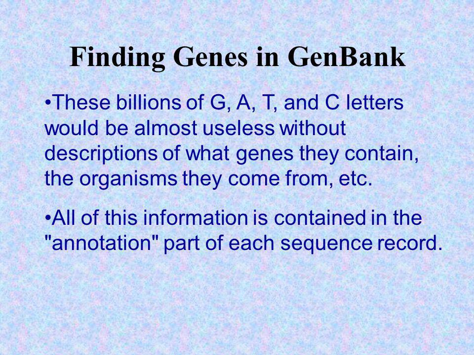 Finding Genes in GenBank