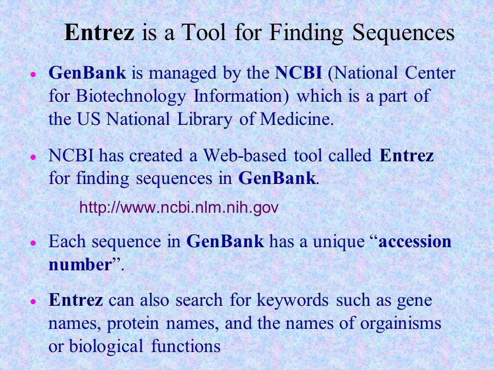 Entrez is a Tool for Finding Sequences
