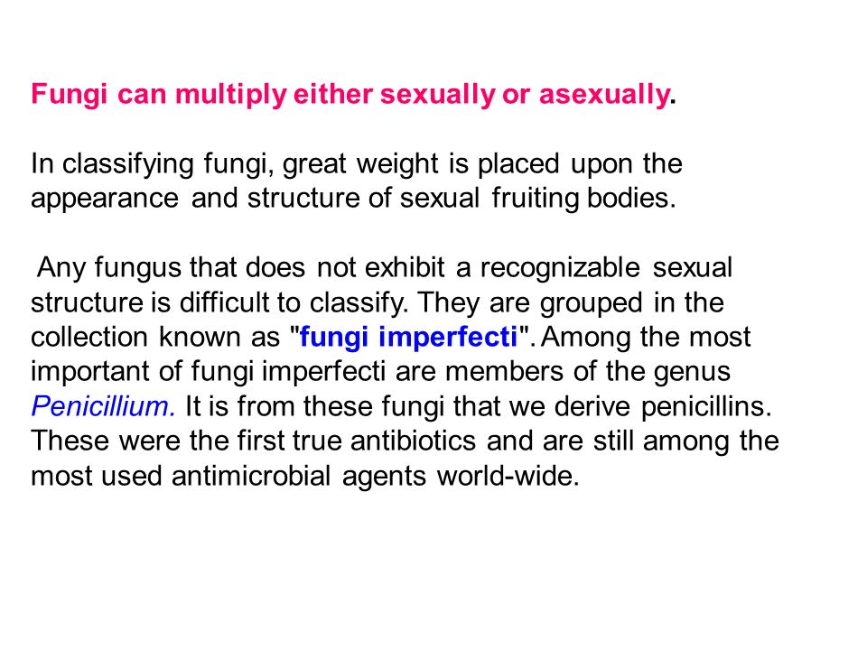 Fungi can multiply either sexually or asexually.