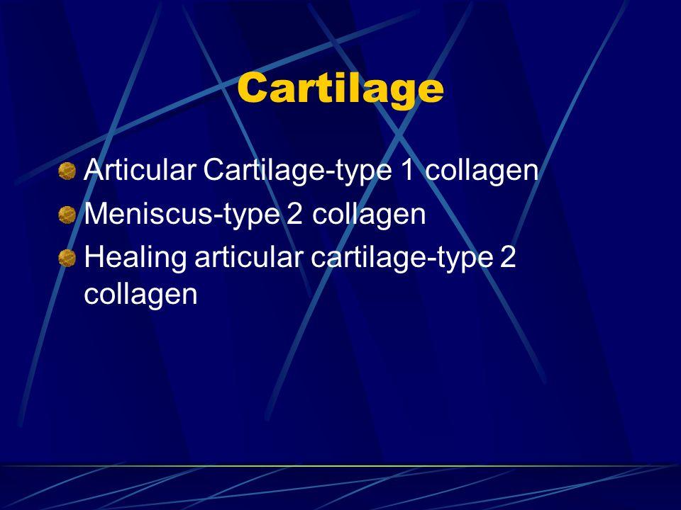 Cartilage Articular Cartilage-type 1 collagen Meniscus-type 2 collagen