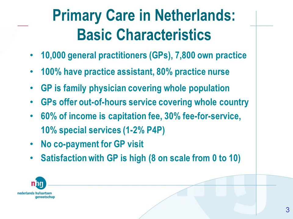 Primary Care in Netherlands: Basic Characteristics