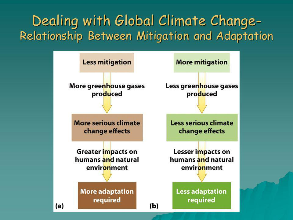 Dealing with Global Climate Change- Relationship Between Mitigation and Adaptation