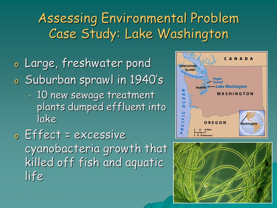 Assessing Environmental Problem Case Study: Lake Washington