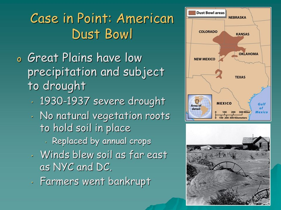 Case in Point: American Dust Bowl