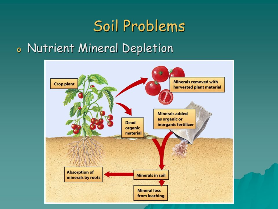 Soil Problems Nutrient Mineral Depletion