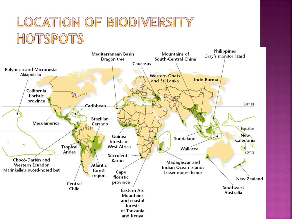 Location of biodiversity hotspots