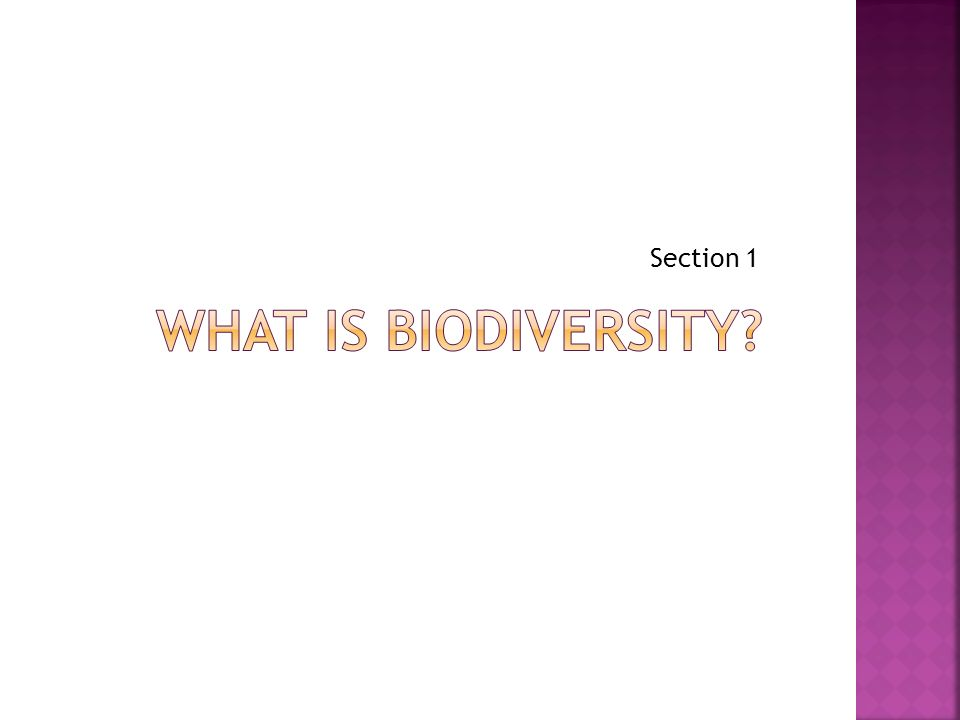 Section 1 What is biodiversity