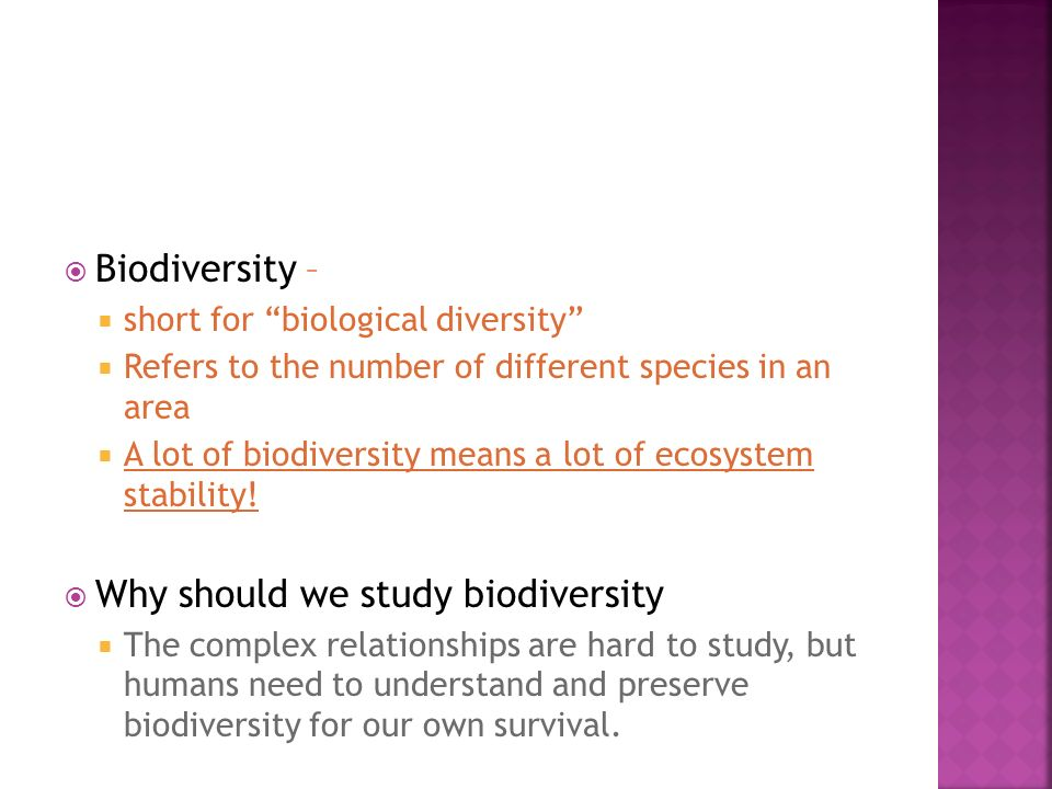Why should we study biodiversity
