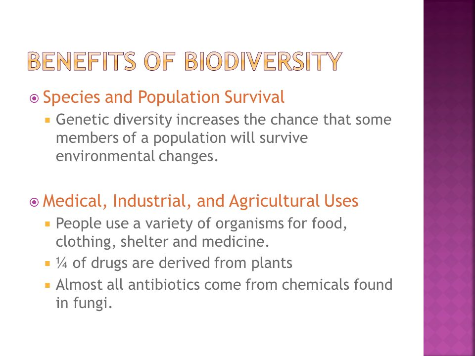 Benefits of biodiversity